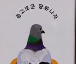[리얼영상] 수집률 100%에 도전하라! '중고로운 평화나라'