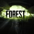 더 포레스트(The Forest)
