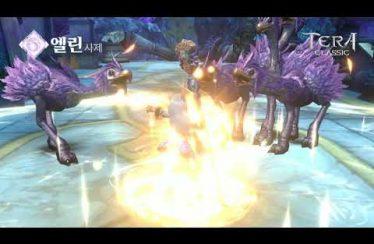[테라 클래식] 캐릭터 소개&스킬영상_사제