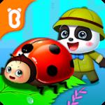 아기 팬더의 곤충 일기