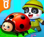 아기 팬더의 곤충 일기 공식 영상