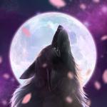 피크로스 문라이트(Moonlight) – (네모로직)