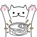 마이리틀고양이 – 동영상